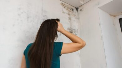 6 Common Places to Find Mold in Your House